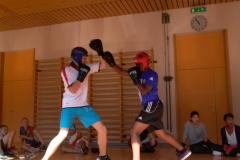 Light Contact Boxing